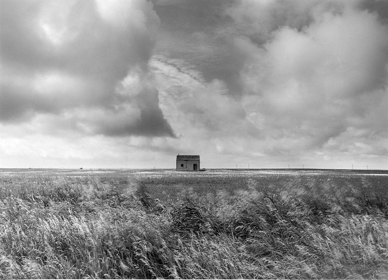 Northern Prairie grass
